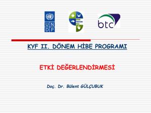 tc istanbul kültür üniversitesi sosyal bilimler enstitüsü