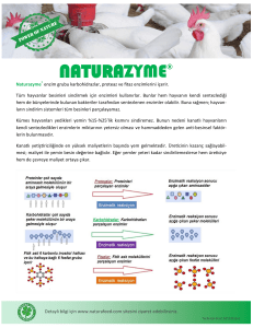 NATURAZYME®