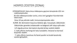 HERPES ZOSTER (ZONA)