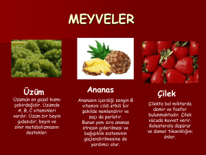 meyveler - WordPress.com