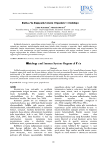 Histology and Immun System Organs of Fish