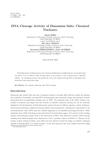 DNA Cleavage Activity of Diazonium Salts