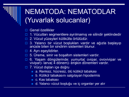 Ascaris lumbricoides ve Askaryaz