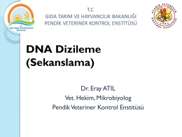 DNA Dizileme (Sekanslama)