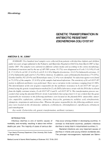 genetic transformation in antibiotic resistant
