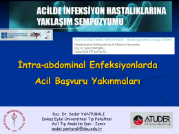 Writing and Publishing in Emergency Medicine Turkish Perspective
