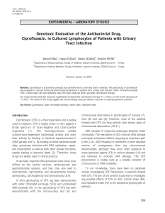 Genotoxic Evaluation of the Antibacterial Drug