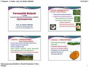 Farmasötik Botanik - WebSitem