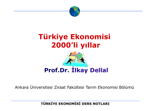 Economic Impact of Climate Change in Turkey