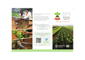 IYS2015 - Food and Agriculture Organization of the United Nations