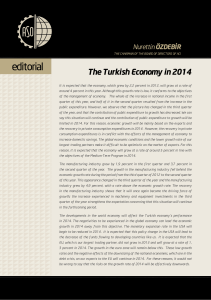 The Turkish Economy in 2014