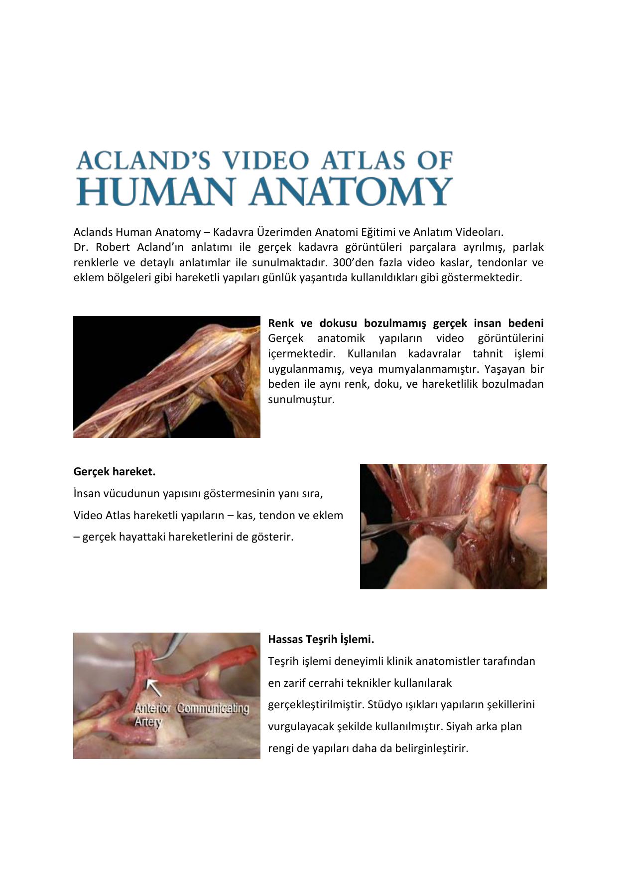 Schön Aclands Human Anatomy Zeitgenössisch - Anatomie Ideen ...