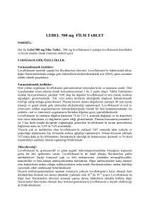 LEVOX 250 mg FİLM TABLET