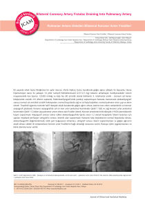 Bilateral Coronary Artery Fistulas Draining Into Pulmonary Artery